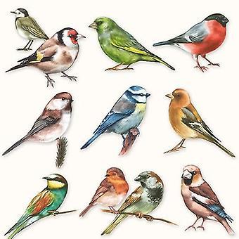 Guardanapos CraftEmotions 5pcs - Coleção de pássaros 33x33cm Ambiente 13310165