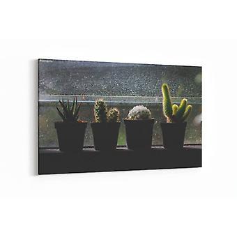 Schilderij - Cactus  op venster in donkere toon — 100x70cm
