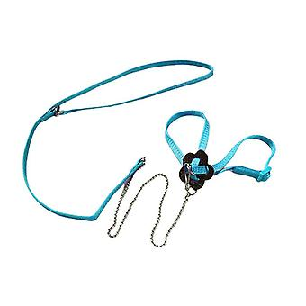(Blue) Adjustable Pet Parrot Bird Outdoor Harness Leash Flying Training Anti Bite Rope