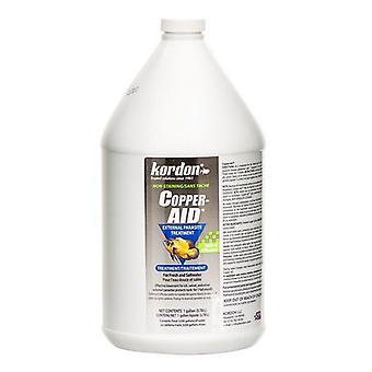 Kordon Copper Aid External Parasite Treatment - 1 Gallon (Treats 3,200 Gallons)