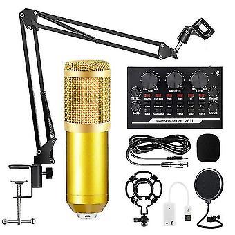 Bm800 Kondensatormikrofon professionelles Live-Podcasting-Mikrofon mit Soundkarte für Youtube