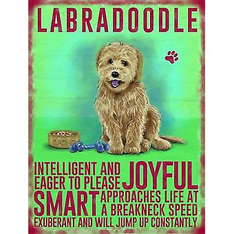 Medium Wall Plaque 200mm x 150mm - Cream Labradoodle by The Original Metal Sign Co