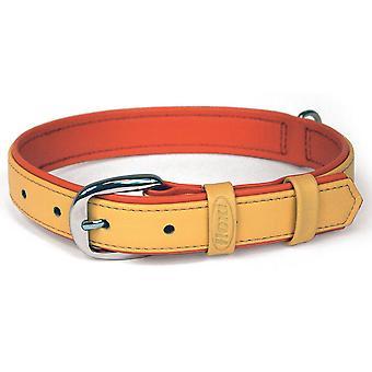 Bogdahn International Flexi Summertime 3 Pet Collar