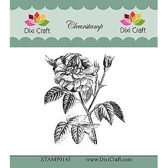Dixi Craft Botaniska Samling 9 Clear Stamp