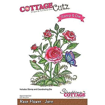 Scrapping Cottage CottageCutz Rose Flower - Juin