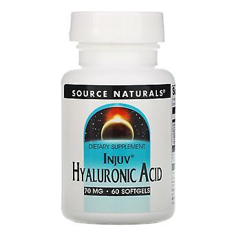 Fuente Naturales, ácido hialurónico, 70 mg, 60 cápsulas blandas