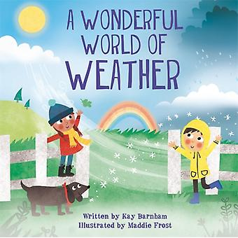 Look and Wonder The Wonderful World of Weather by Barnham & Kay