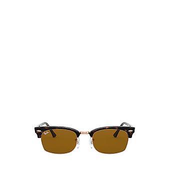Ray-Ban RB3916 havana unisex sunglasses