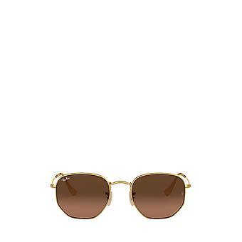 Ray-Ban RB3548N occhiali da sole unisex arista