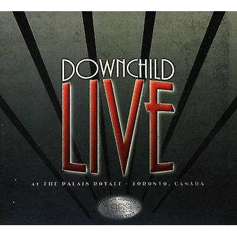 Downchild - Live at the Palais Royale [CD] USA import