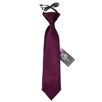 Pianura di prugna raso elastico cravatta per i ragazzi