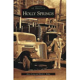 Holly Springs, Mississippi (imágenes de América serie)