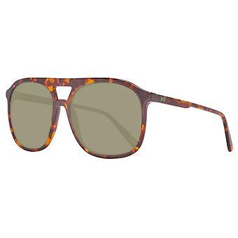 Men's Sunglasses Helly Hansen HH5019-C02-55 Brown (ø 55 mm)