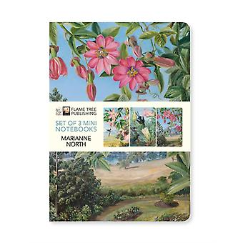 Kew Gardens Marianne North Mini Notebook Collection by Created by Flame Tree Studio