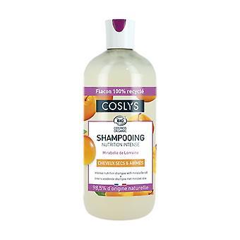 Shampoo voor droog en beschadigd haar 500 ml