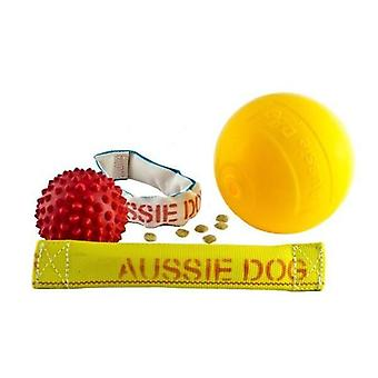 Aussie koira - nulikka Pack Medium