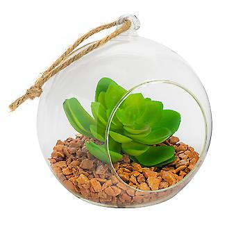 Nicola Spring Glass Plant Terrarium Set for Succulent Plants Ferns Cactus - Tabletop or Hanging Display - 120mm