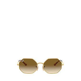 Ray-Ban RB1972 arista unisex sunglasses
