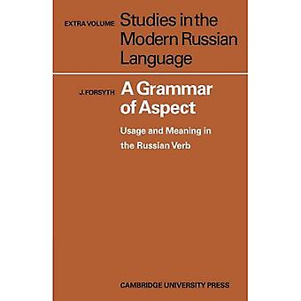 A Grammar of Aspect: Usage and Meaning in the Russian Verb (Studies in the Modern Russian Language)