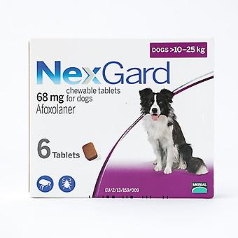 NexGard Chews for Medium Dogs 10-25kg (24.1-60lbs), 6 Pack