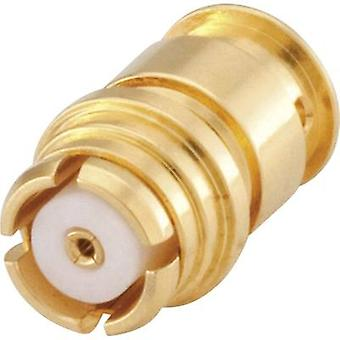 Rosenberger 19K107-271L5 SMP connector Socket, straight 50 Ω 1 pc(s)