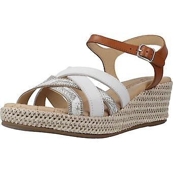 Pitillos Sandals 6192 V20 Color Hielcuer