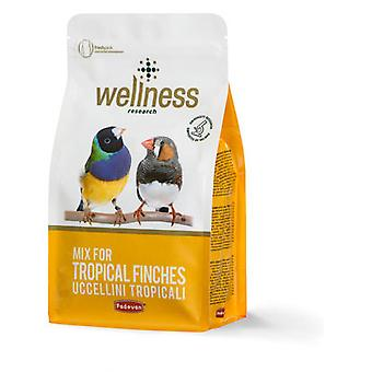 Padovan Pienso Wellness  Tropical Finches (Birds , Bird Food)