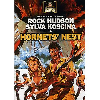 Hornet's Nest (1970) [DVD] USA import
