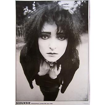 Siouxsie Holland Holland Park affiche Poster Print
