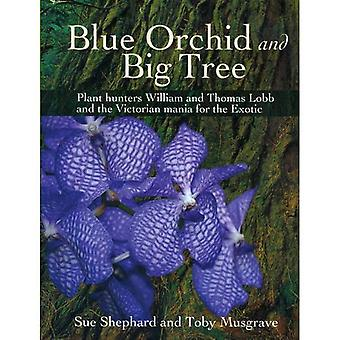 Blue Orchid and Big Tree: Plant Hunters William and Thomas Lobb and the Victorian Mania for the Exotic