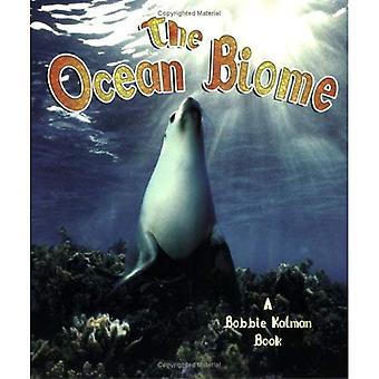 Il bioma dell'oceano