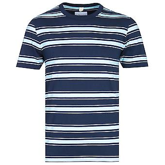 Albam Heritage Stripe Jasnoniebieski i granatowy t-shirt