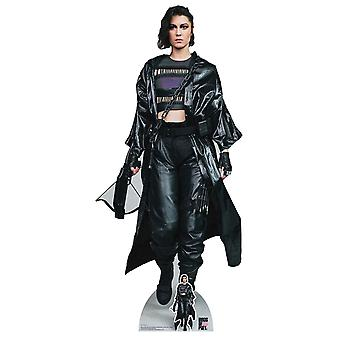 Huntress Helena Bertinelli Birds of Prey Lifesize Cardboard Cutout / Standee