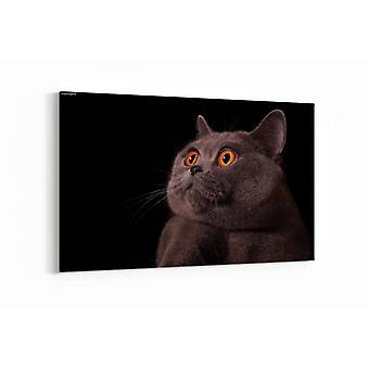 Malerei - Schnout von grau britischen Katze - 90x60cm
