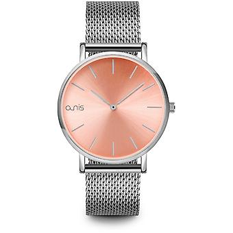 A-nis watch aw100-10