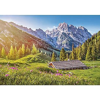 Castorland Summer in the Alps Jigsaw Puzzle (500 Pieces)