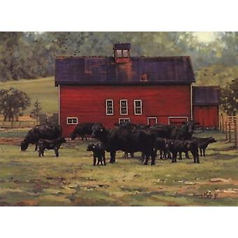 By the Red Barn Poster Print by Bonnie Mohr (16 x 12)