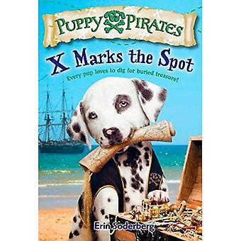 X Marks the Spot (chiot Pirates)