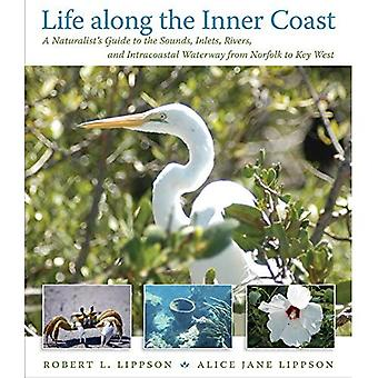 Life along the Inner Coast: A Naturalist's Guide to the Sounds, Inlets, Rivers, and Intracoastal Waterway from Norfolk to Key West