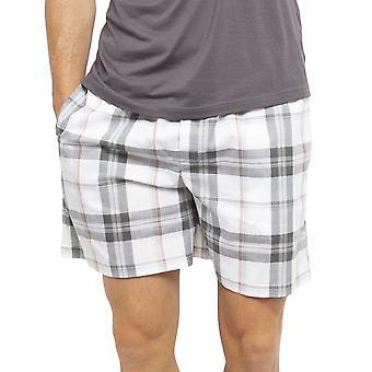 Cyberjammies 6440 Männer's Jackson Grau Check Baumwolle gewebt Pyjama Kurz