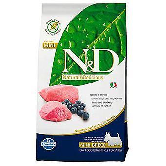Farmina N&D Grain Free Adult Mini Lamb and Blueberry (Dogs , Dog Food , Dry Food)
