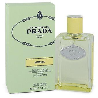 Prada les infusions de mimosa eau de parfum spray par prada 551955 100 ml