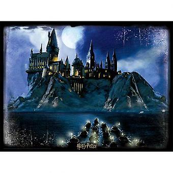 Harry Potter 3D Image Puzzle 500pc Hogwarts Night