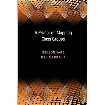 Een inleiding op mapping class groups (PMS-49)