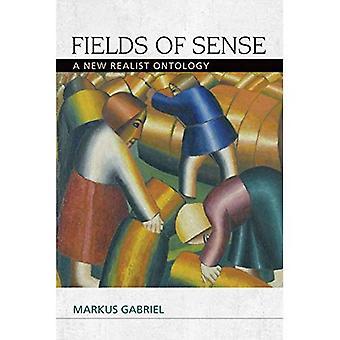 Campi di senso: una nuova ontologia realista (speculativa realismo)