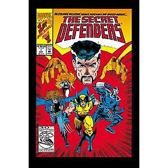 Doctor Strange And The Secret Defenders by Roy Thomas & Ron Marz & Andre Coates