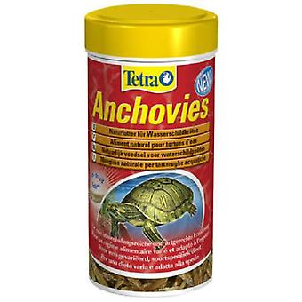 Tetra Anchovies (Reptiles , Reptile Food)