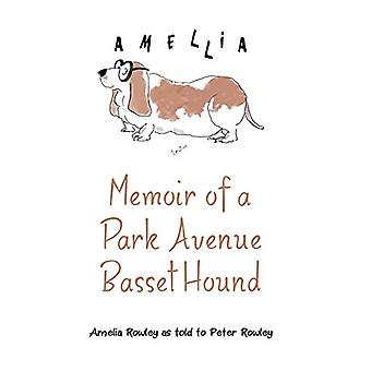 Memoir of a Park Avenue Basset Hound - How a South Jersey Hound Found