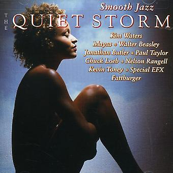 Vlotte Jazz-de Stille Storm - Smooth Jazz-de Stille Storm [CD] USA importeren