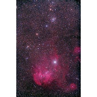 NGC 3766 und der Lambda-Cen-Nebel im Sternbild Centaurus Poster Print von Alan DyerStocktrek Bilder